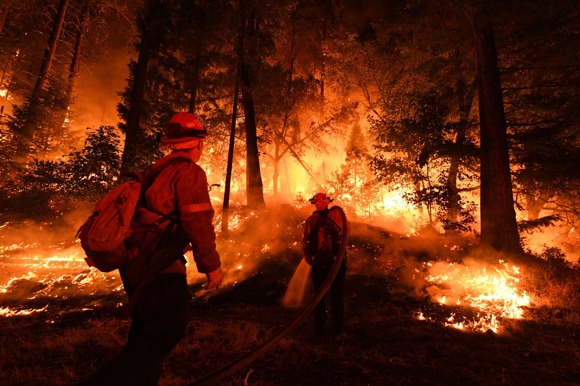 California Knew the Carr Wildfire Could Happen. It Failed to Prevent it.