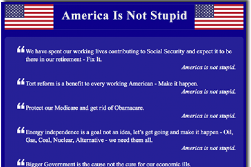 D'Oh! 'America Is Not Stupid' Wins IRS Recognition as ...