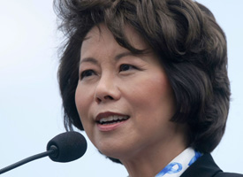 Labor Secretary Elaine Chao (Credit: Alex Wong/Getty Images)