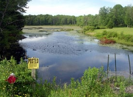 Owners of this state-protected wetland near Oxford, N.Y. learned that a water services company was withdrawing water for use in a nearby gas drilling operation. New York does not uniformly regulate water withdrawals for industrial use and does not have a comprehensive plan to provide the millions of gallons of water needed for proposed drilling of the Marcellus Shale. (Credit: Lori Zunno)