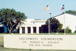 The Southwest Foundation for Biomedical Research was criticized by the GAO for lax security
