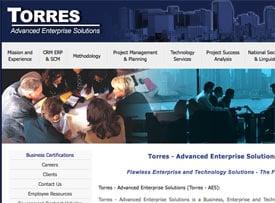 Torres Advanced Enterprise Solutions website
