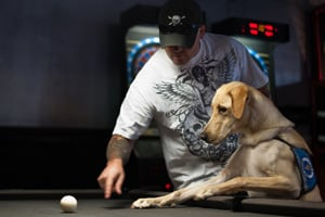 Sgt. Brandon Sanford's service dog, Harley, takes interest in the cue ball during a social outing with other Mentis patients. (Blake Gordon/Aurora Photos)