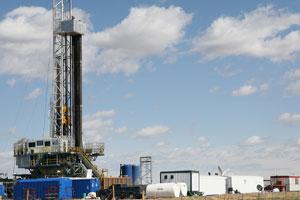 Natural Gas Quick Connect Kit Calore Equipment
